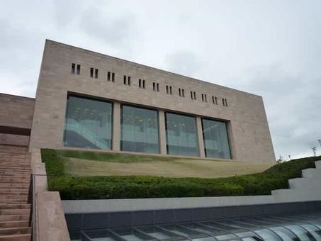 Moa museum of art p1010906 1528088520