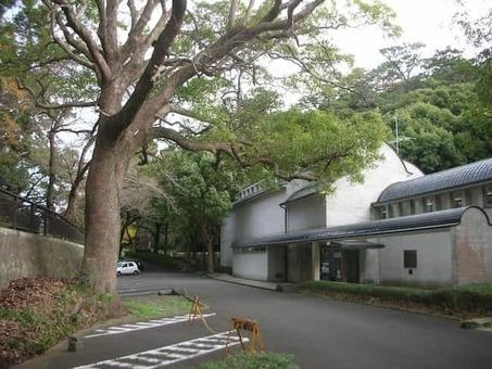 Nakagawa 1528088661