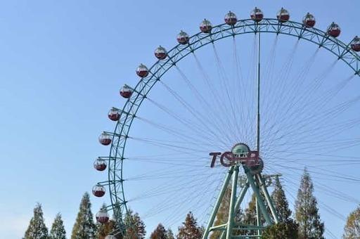 Ferris wheel in tobu zoo park 001 1528088712