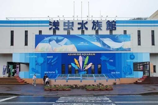 Asamushi aquarium aomori japan03n 1528096694