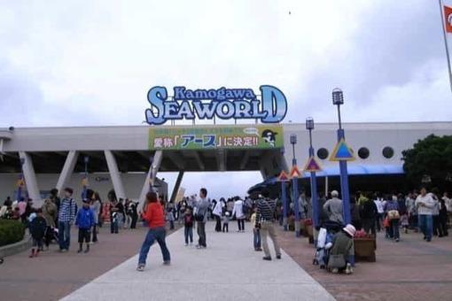 Kamogawa sea world 1528097084