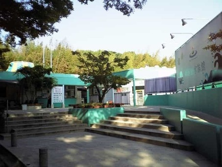 Newyashimaaquarium 1528099107