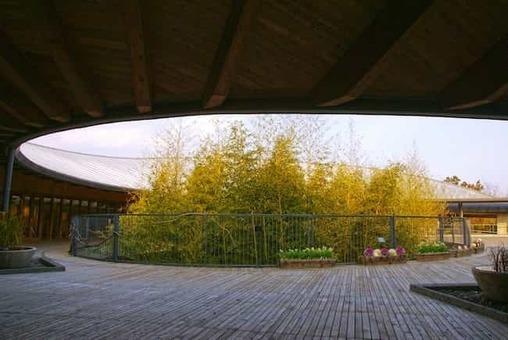 Kochi prefectural makino botanical garden01s3872 1528082125