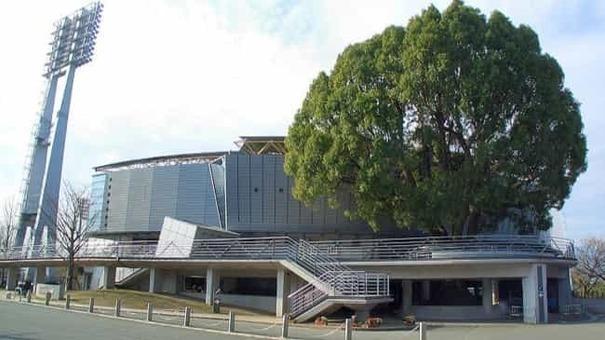 Kumamoto fujisakidai baseball stadium 1 1528082189