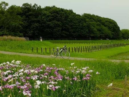 Uchimaki park in june  28b 29 1528089342