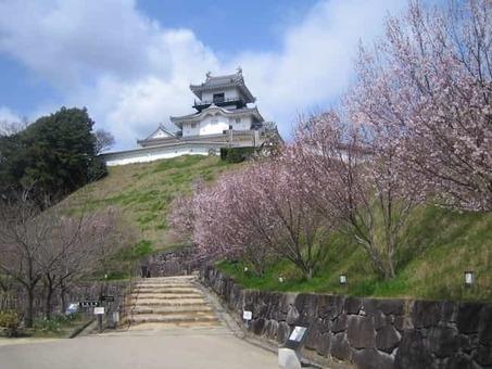 Kakegawajo 1528088164