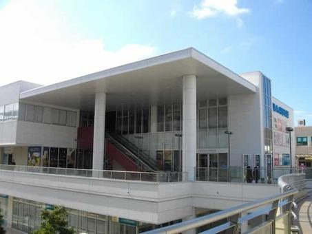 Cocola avenue 1528090894