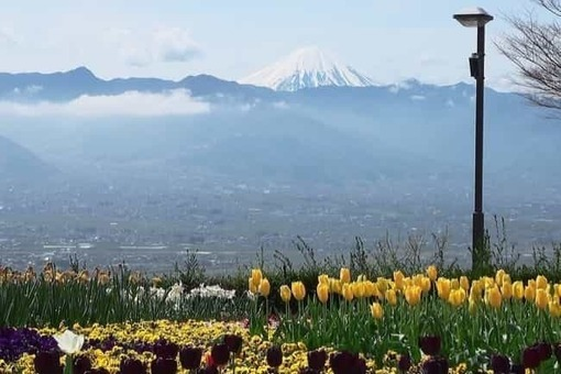 From fruit  ef bd 90ark the view of kofu basin and mt. fuji 1528091997