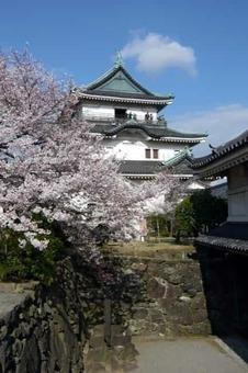 Wakayama castle01 r 1528088439