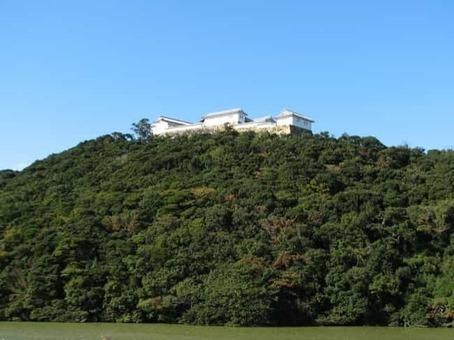 Tomioka castle 01 1528092670